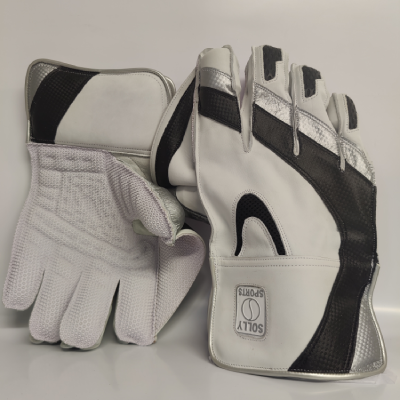Solly Wicket Keeping Gloves-Black